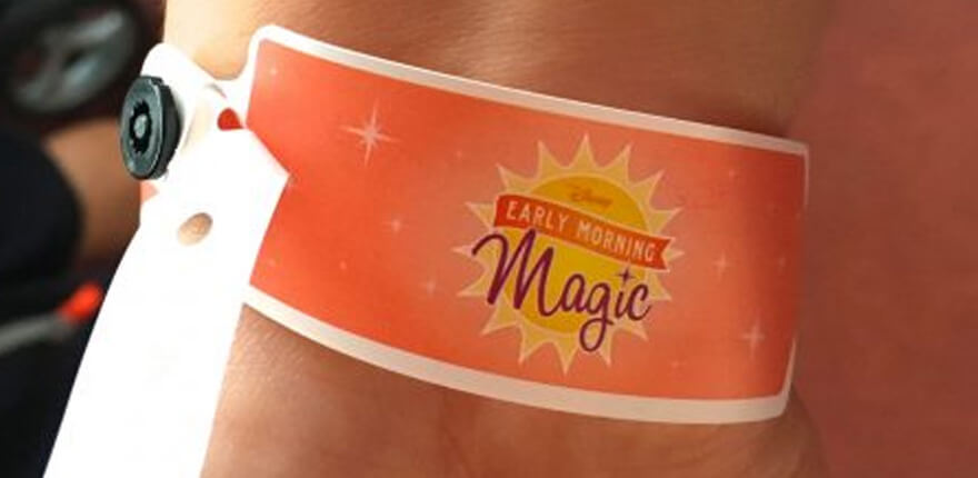 Como funciona o Disney Early Morning Magic?
